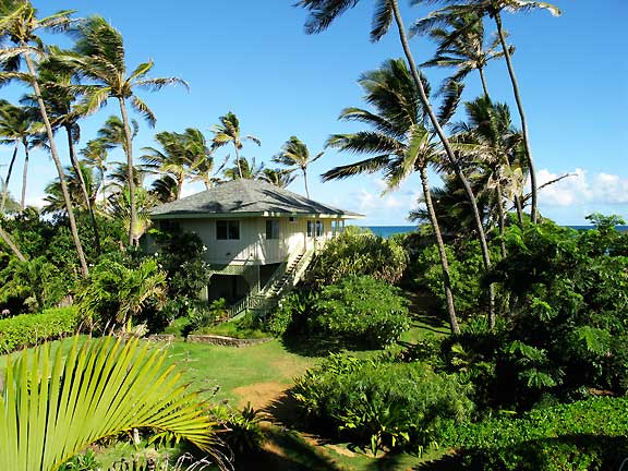 Beach House Maui North Shore Vacation Rentals At Coconut